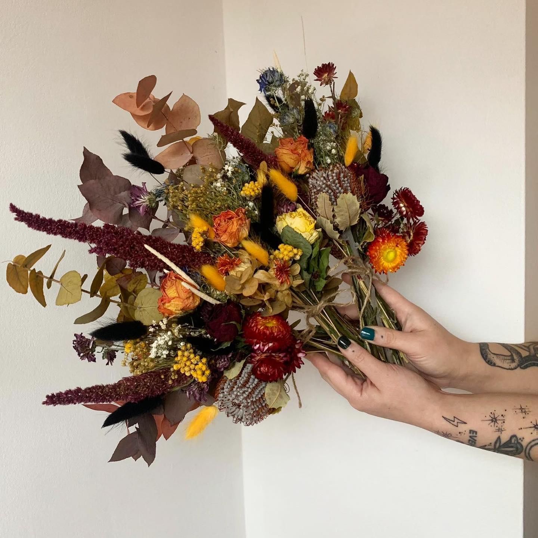 Harbinger of Bloom